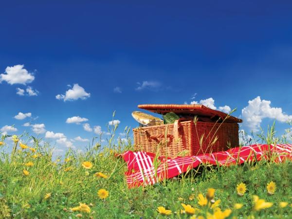 den-picknick-koffer-packen-ein-schöner-picknick-korb-auf dem gras