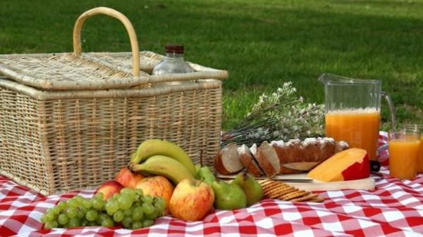 den-picknick-koffer-packen-und-alle-sachen-zubereiten-obst und brot