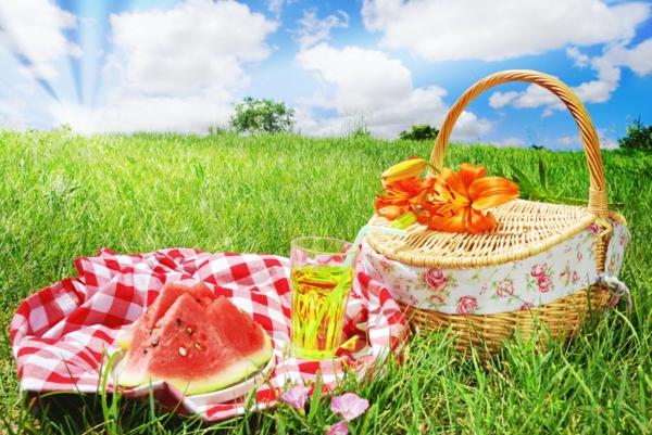 den-picknick-koffer-packen-gutes bild vom korb auf dem gras