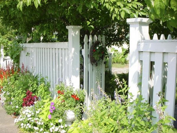 gartenzaungestaltung-weiß- bäume und grüne pflanzen