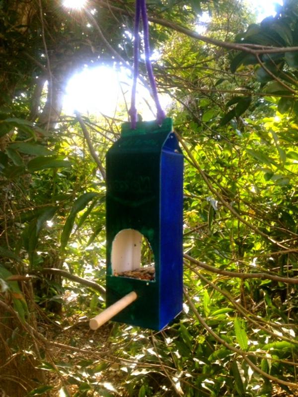 nistkästchen-selber-bauen- auf einen baum hängen