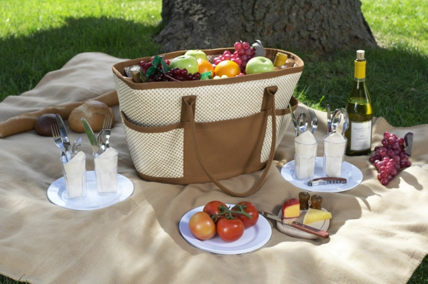 picknick-korb-den-picknick-koffer-packen-und neben ein baum gehen