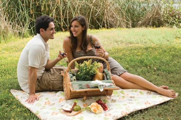 picknick-korb-für-zwei-personen-eine hubsche junge frau und ein mann trinken wein auf dem gras