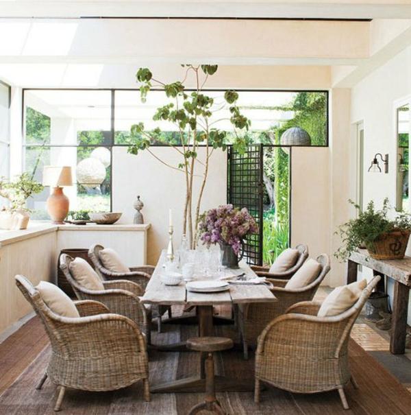 rattanmöbel-im-modernen-esszimmer- grüne pflanze