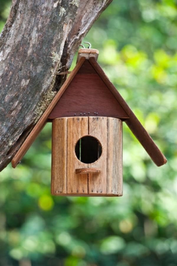 süßes-vogelhaus-selber-bauen- an einen baum aufhängen