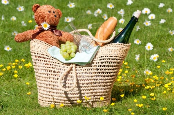 teddybär-im-picknickkorb-super gesaltung