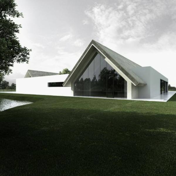 verblüffende-idee-für-minimalistische-architektur-dach