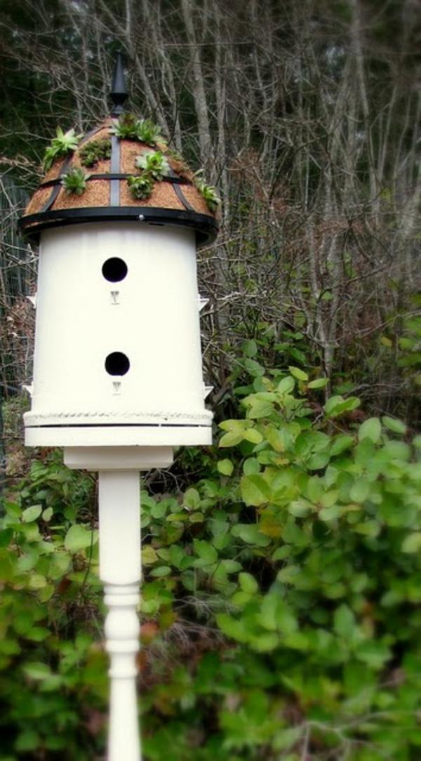 vogelhaus-sehr-hoch-selber-bauen- im wald