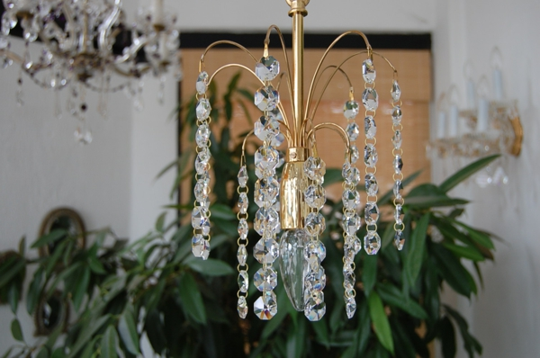 zärtlich-wirkender-lüster-aus-kristall-pflanzen dahinter