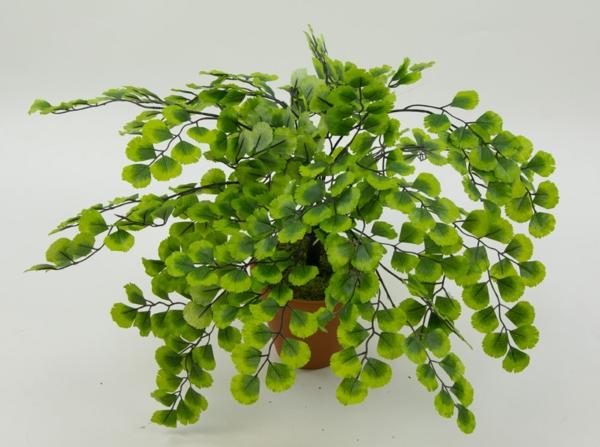 Adianthumbusch-Frauenhaarfarn-Kunstpflanzen-grün