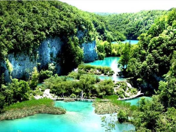 Farbbedeutung-Grün-grüner-Wald-und-der-See