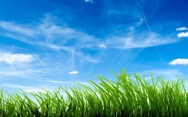 Farbbedeutung-Grün-grass-und Himmel-und-einige-Wolken