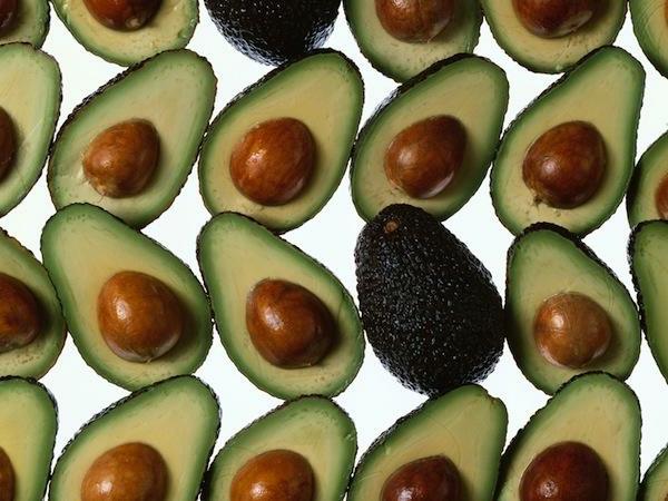 avocado-anpflanzen-avocados (2)