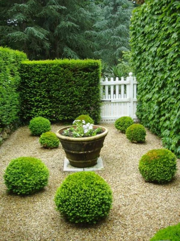 buchsbaum-formen-Franzossischer-garten