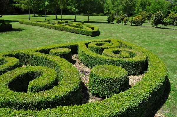 buchsbaum-formen-Topiary15