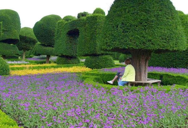 buchsbaum-formen-historisches-topiary-garten-süd-cumbria
