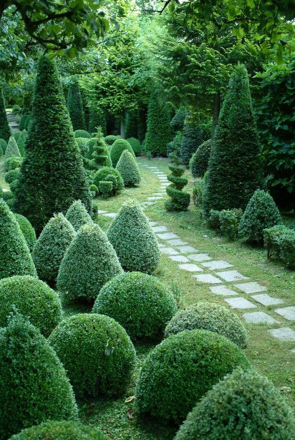 buchsbaum-formen-kleiner-weg