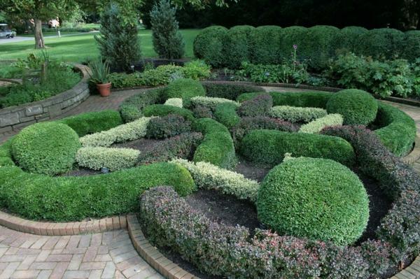 buchsbaum-formen-kugelformig