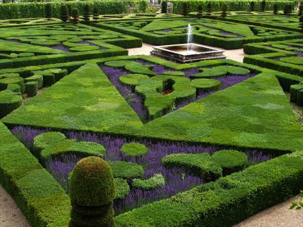 buchsbaum-formen-loire-valley-french