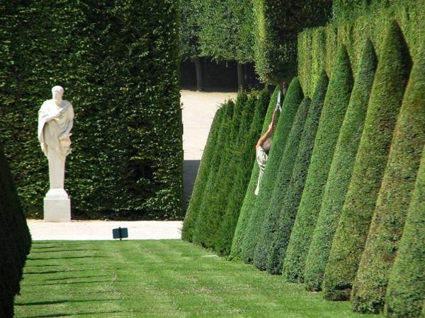 buchsbaum-formen-statue