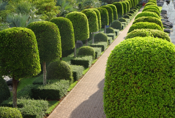 Naturweg durch den Garten