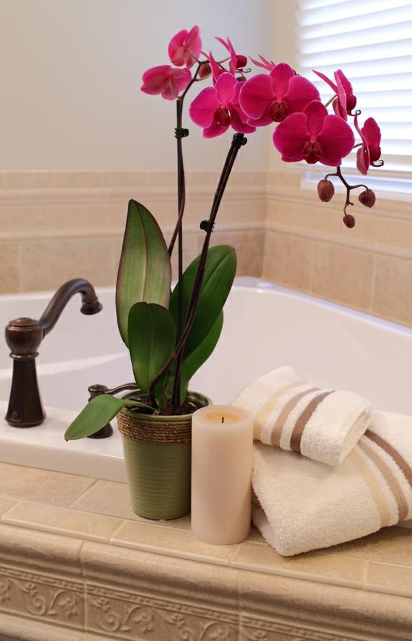 Deko f rs badezimmer