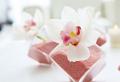 Deko mit Orchideen – 31 kreative Ideen!