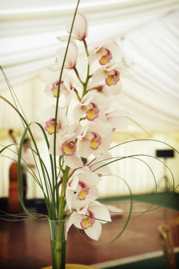 deko-mit-orchideen-kreativ-gestaltet- in einer großen halle