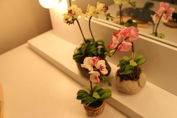 Deko Mit Orchideen U2013 31 Kreative Ideen!