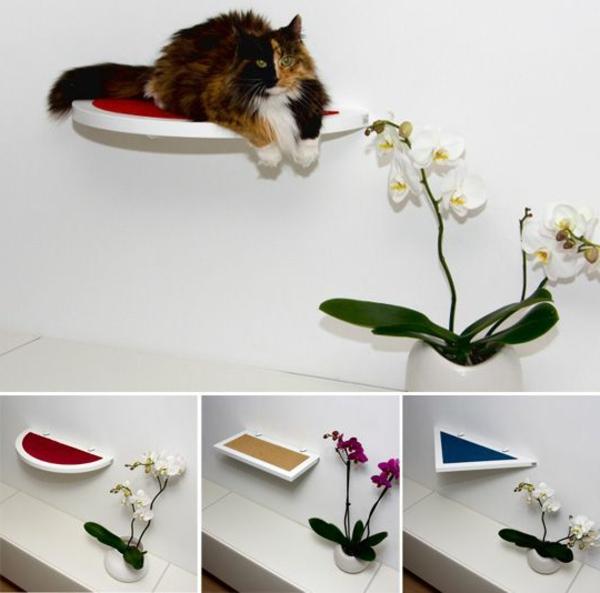 Design Katzenmöbel für brave Katzen! - Archzine.net