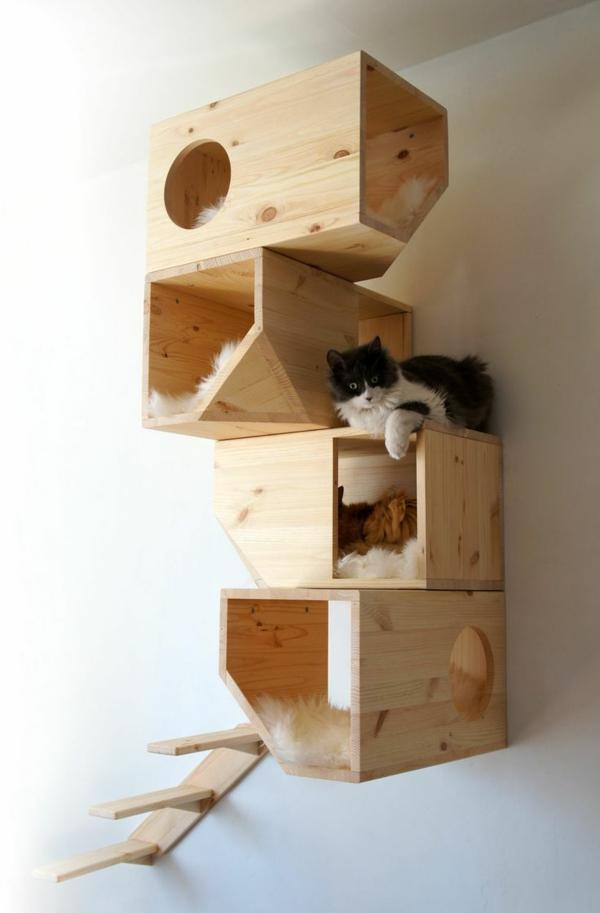 design-katzenmöbel-imgur