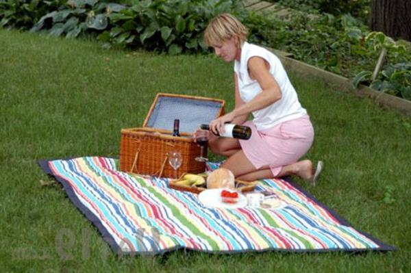 ein-schönes-beispiel-für-picknickdcken- eine frau bereitet alles vor