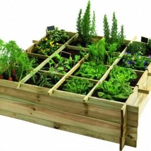 Gemüsebeet planen - Tipps für praktisch orientierte Gärtner!