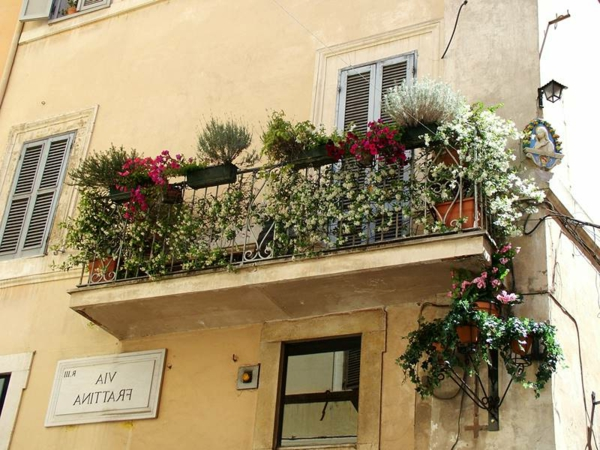 hängende-balkonpflanzen-balkon-in-rome