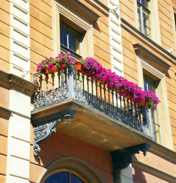 hängende-balkonpflanzen-dekoration