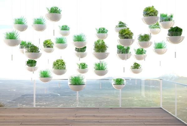 H ngende balkonpflanzen f r pr chtige outdoor r ume for Moderne pflanzen innen