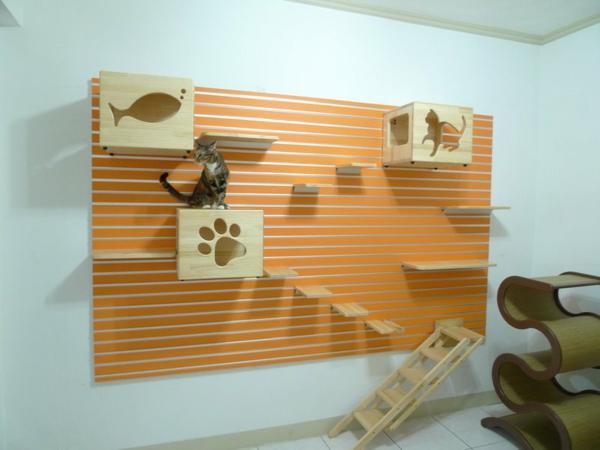 katzen-kletterwand-Catswall (2)