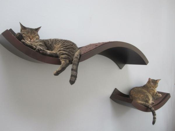katzenkletterwand-platz-zum-entspannen
