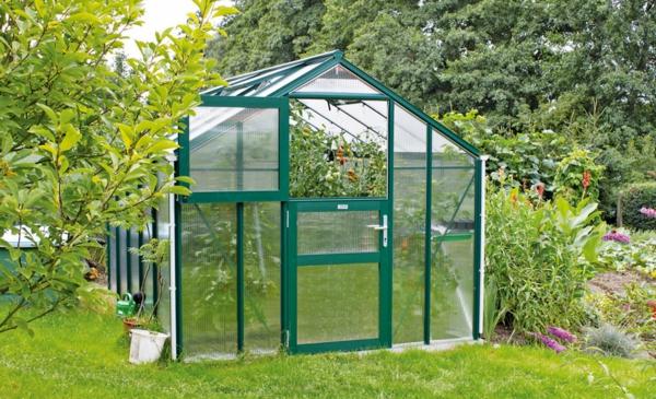 kleines-modernes-glashaus- umgebung vom gras