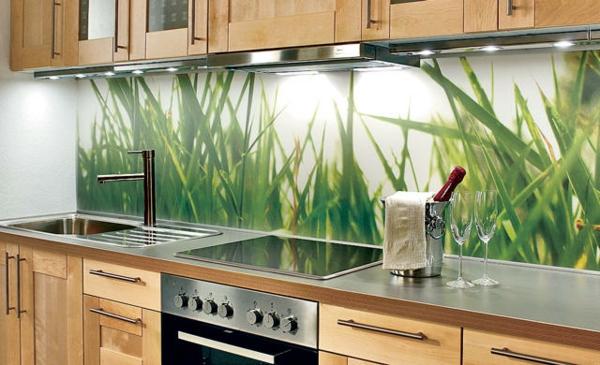kreative-küchenrückwand-aus-glas- interessantes bild