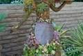 Lustige Gartenfiguren oder die Topiary – Kunst