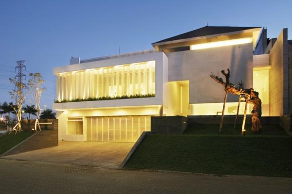 moderne-fassade-für-häuser-kreativ-beleuchtet- ein zweig davor