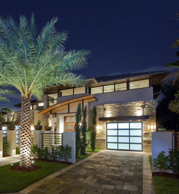 moderne-fassade-für-häuser-mit-einer-großen-palme- foto in der nacht
