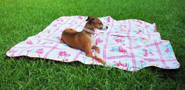 picknick-decke-mit-einem-hund-darauf- sehr schönes foto