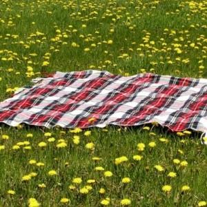 Picknick Decke - 36 prima Vorschläge!