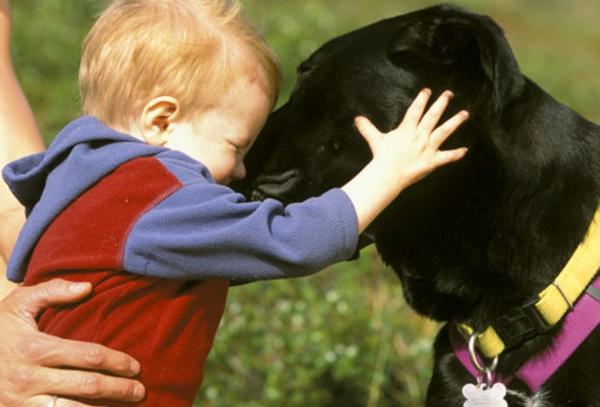schöne-tierbilder-ein-baby-und-ein-hund- das baby freut sich