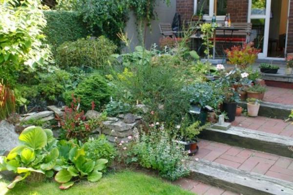 schöner-vorgarten-gartentreppe-selber-bauen- viele grüne pflanzen