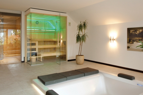 Glas-sauna-mit-einer-palme-und-badewanne