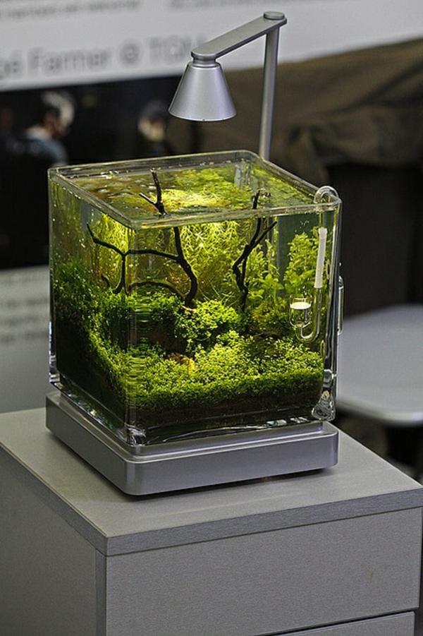 Außergewöhnliche-Dekoration-aquarium-grün-