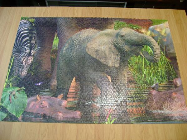 Bilder-puzzle-africa-1